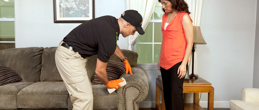 Carmel, IN carpet upholstery cleaning
