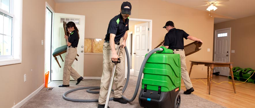 Carmel, IN cleaning services